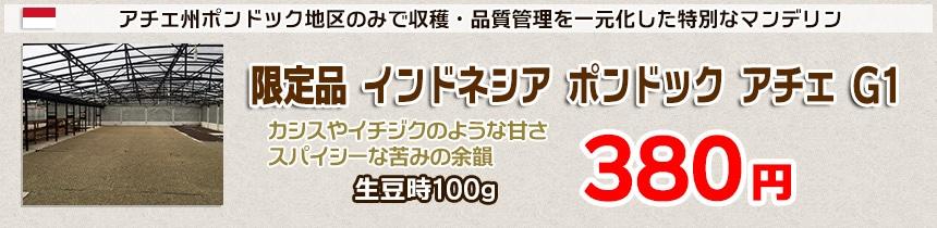 今月のおすすめ豆 限定品 インドネシア ポンドック アチェ G1
