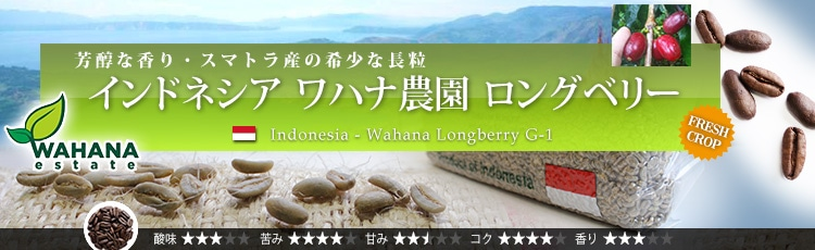 インドネシア産のロングベリー