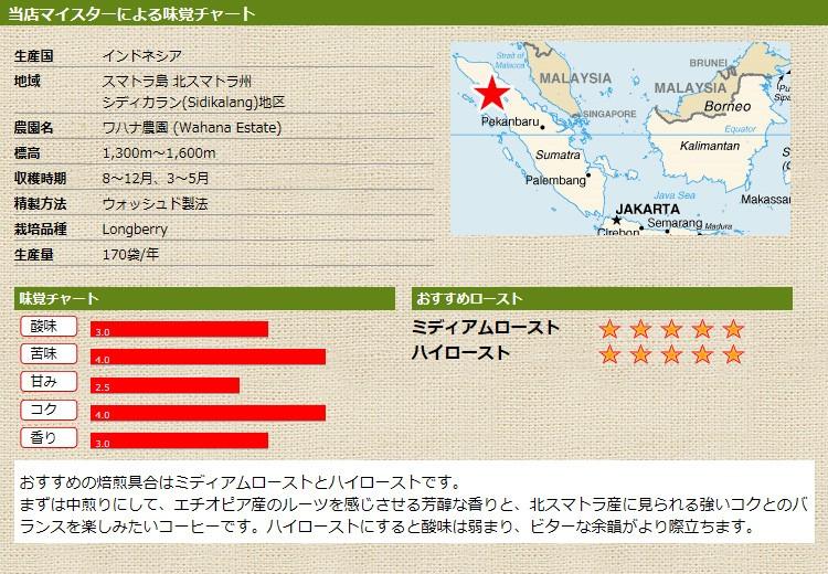 当店マイスターによる味覚チャート インドネシア ワハナ農園 ロングベリー