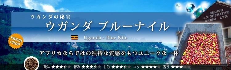 ウガンダ ブルーナイル - Uganda Blue Nile