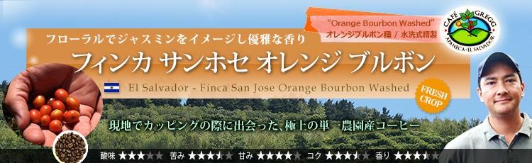 エルサルバドル フィンカ サンホセ オレンジ ブルボン - El Salvador Finca San Jose Orange Bourbon Washed