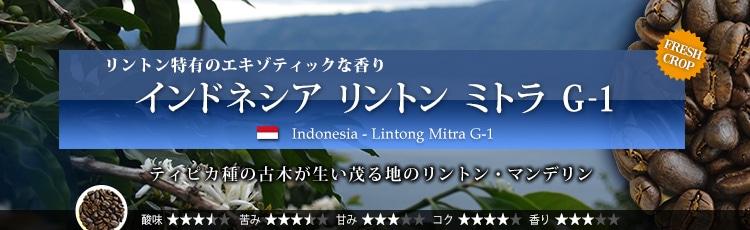 インドネシア リントン ミトラ G-1 - Indonesia Lintong Mitra G-1