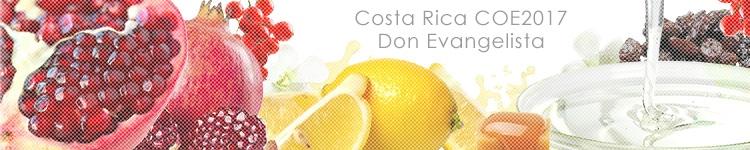 コスタリカ COE2017 #24 ドン エヴァンヘリスタのカッピングイメージ