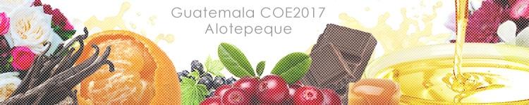 グアテマラ COE2017 #27 アロテペケのカッピングイメージ
