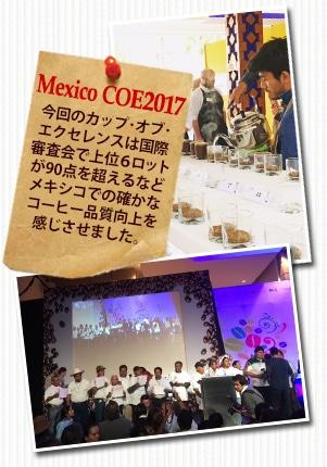 メキシコ COE2017 エル ボルドについて