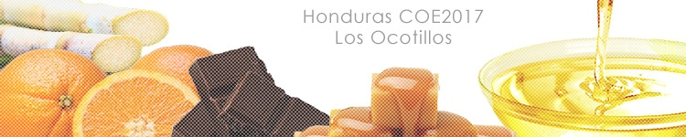 ホンジュラス COE2017 ロス オコティージョスのカッピングイメージ