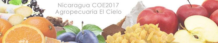 ニカラグアCOE2017 アグロペクアリア エル シエロのカッピングイメージ