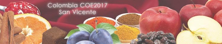 コロンビア COE2017 #10 サン ヴィセンテのカッピングイメージ