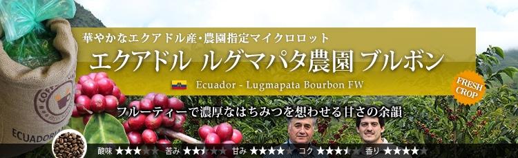 エクアドル ルグマパタ農園 ブルボン - Ecuador Lugmapata Bourbon FW