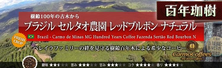 ブラジル 百年珈樹 セルタオ農園 レッドブルボン ナチュラル - Brazil Carmo de Minas MG Hundred Years Coffee Fazenda Serto Red Bourbon Natural
