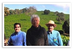 ブラジル セルタオ農園について