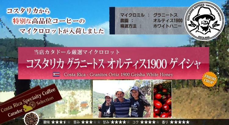 コスタリカ グラニートス オルティス1900 ゲイシャ (WEB限定) - Costa Rica Granitos Ortiz 1900 Geisha White Honey