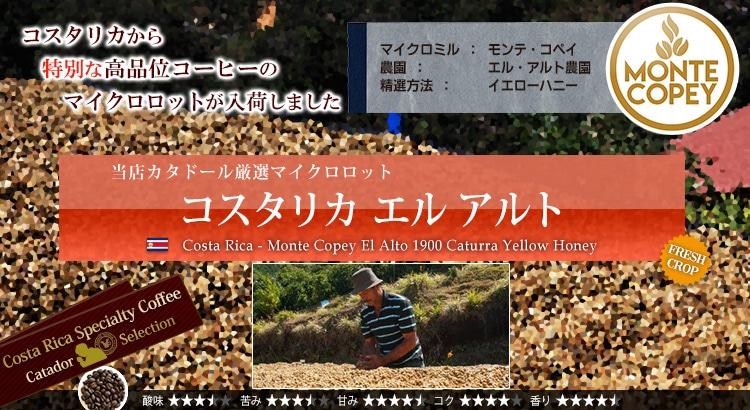 コスタリカ エル アルト - Costa Rica Monte Copey El Halcon Caturra Yellow Honey