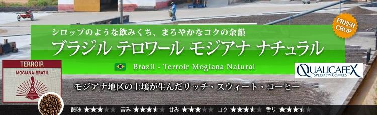 ブラジル テロワール モジアナ ナチュラル - Brazil Terroir Mogiana Natural
