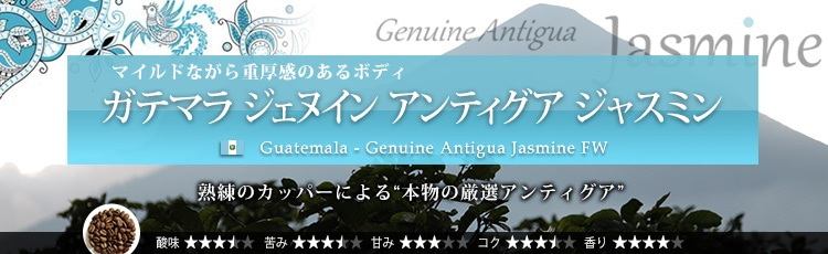 グアテマラ ジェヌイン アンティグア ジャスミン - Guatemala Genuine Antigua Jasmine FW