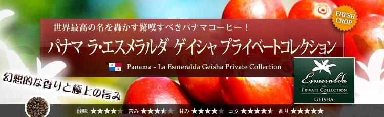 パナマ ラ・エスメラルダ ゲイシャ プライベートコレクション - Panama La Esmeralda Geisha Private Collection Washed