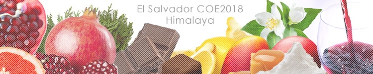 エルサルバドル COE2018 ヒマラヤのカッピングイメージ