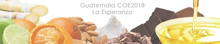 ガテマラ COE2018 ラ エスペランサのカッピングイメージ