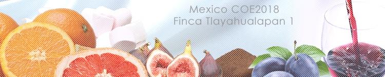 メキシコ COE2018 フィンカ トゥラヤウアラパン 1のカッピングイメージ