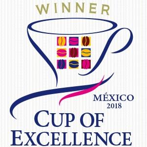 メキシコ COE2018 ウィナーマーク
