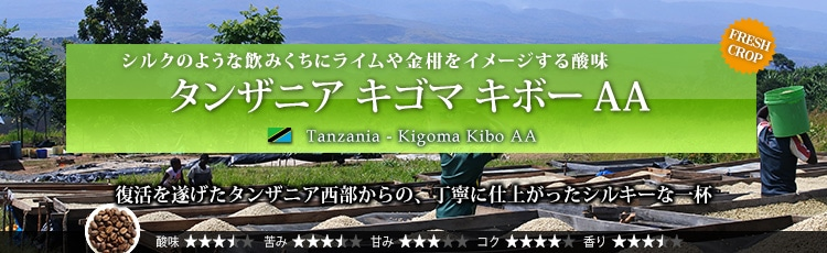 タンザニア キゴマ キボー AA - Tanzania Kigoma Kibo AA