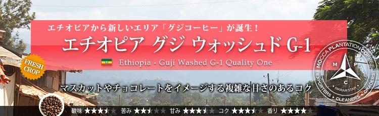 エチオピア グジ ウォッシュド G-1 - Ethiopia Guji Washed G-1 Quality One