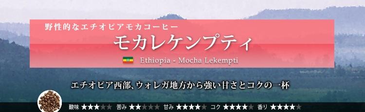 モカレケンプティ - Ethiopia Mocha Lekempti