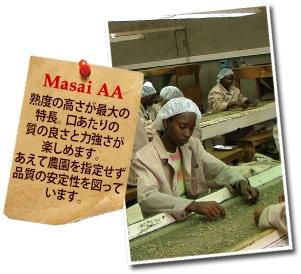 ケニア マサイAAについて