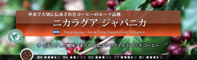 ニカラグア ジャバニカ - Nicaragua Java Nica