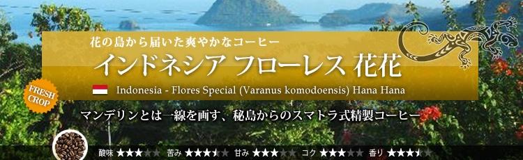 インドネシア フローレス 花花 - Indonesia Flores Special (Varanus komodoensis) Hana Hana