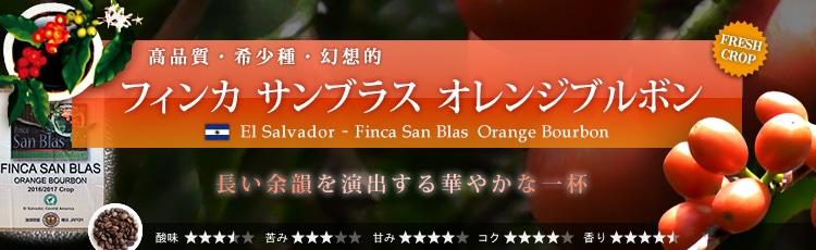 サンブラス・オレンジブルボン
