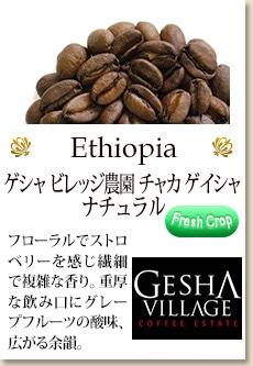 エチオピア ゲシャ ビレッジ農園 ゲイシャ ナチュラル