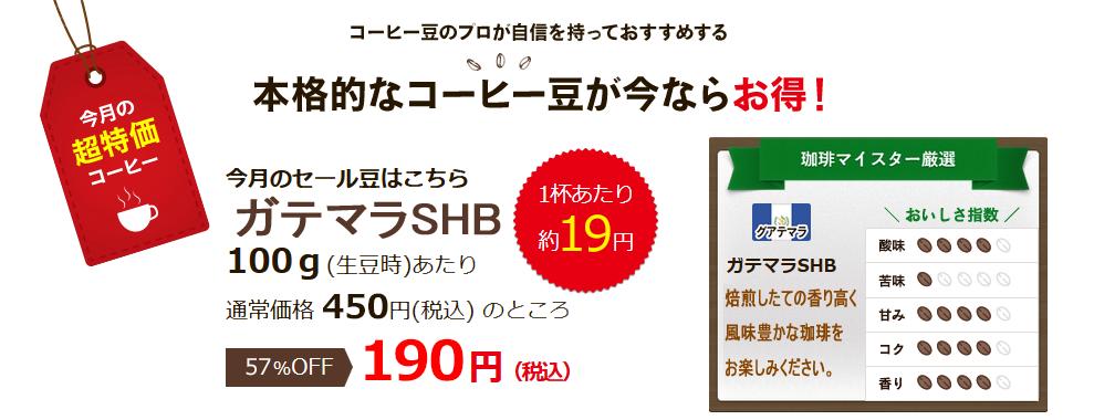 6月の超特価豆 ガテマラSHB