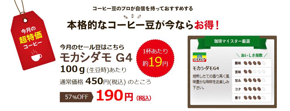 5月の超特価豆 モカシダモG4
