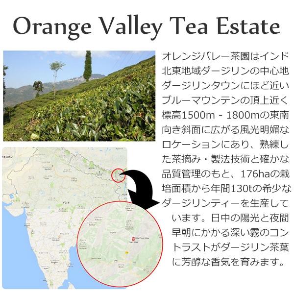 2020年ダージリンファーストフラッシュSFTGFOP1_DJ-14オレンジバレー茶園50g / 紅茶 茶葉 クオリティーシーズンティー シーズナルティー 数量限定
