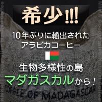 マダガスカル ミマ ブルボン ナチュラル & マダガスカル カムカフィ ウォッシュド