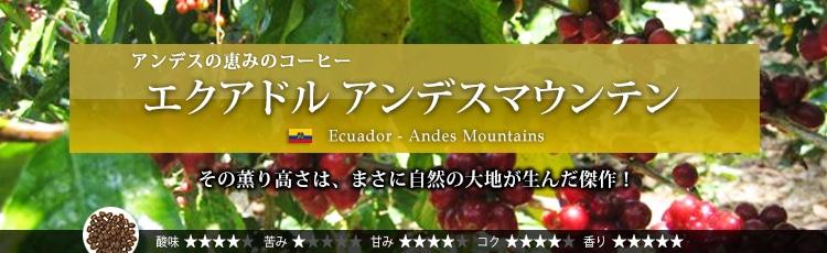 エクアドルアンデスマウンテン - Ecuador Andes Mountains