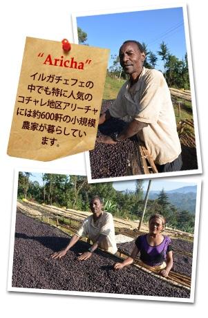 エチオピア アリーチャG-1 ナチュラルについて
