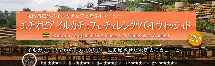 エチオピア イルガチェフェ チェレレクツ G-1 ウォッシュド - Ethiopia Yirgacheffe Kochere G-1 Chelelektu Washed