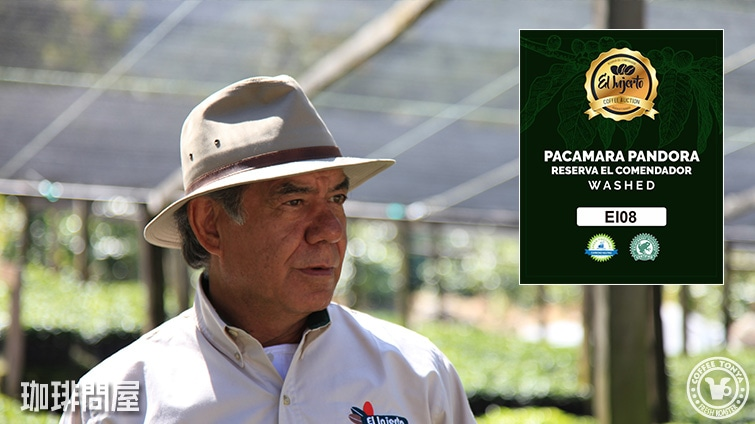 グアテマラ エルインヘルト農園 パカマラ レゼルバ デル コメンダドール