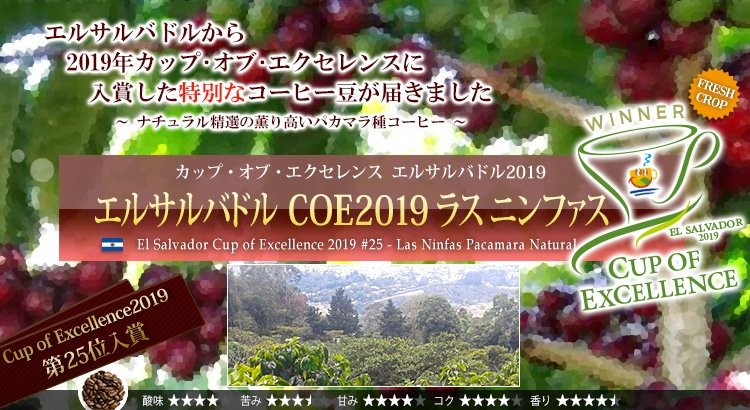 エルサルバドル COE2019 ラス ニンファス - El Salvador Cup of Excellence 2019 #25 - Las Ninfas Pacamara Natural
