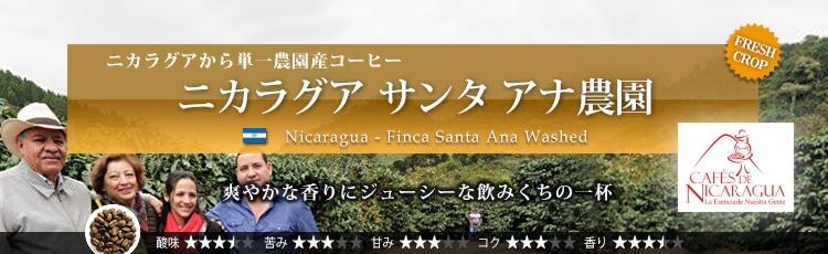 ニカラグア サンタ アナ農園 - Nicaragua Finca Santa Ana Washed