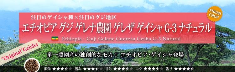 エチオピア グジ ゲレナ農園 ゲレザ ゲイシャ G-3 ナチュラル - Ethiopia Guji Gelane Guereza Gesha G-3 Natural