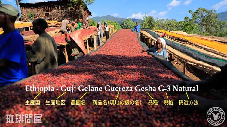 エチオピア グジ ゲレナ農園 ゲレザ ゲイシャ G-3 ナチュラル