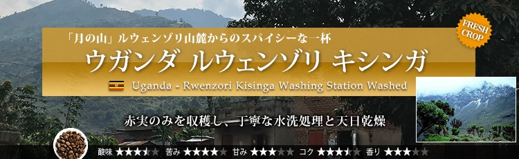 ウガンダ ルウェンゾリ キシンガ - Uganda Rwenzori Kisinga Washing Station Washed
