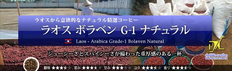 ラオス ボラベン G-1 ナチュラル - Laos Arabica Grade-1 Bolaven Natural