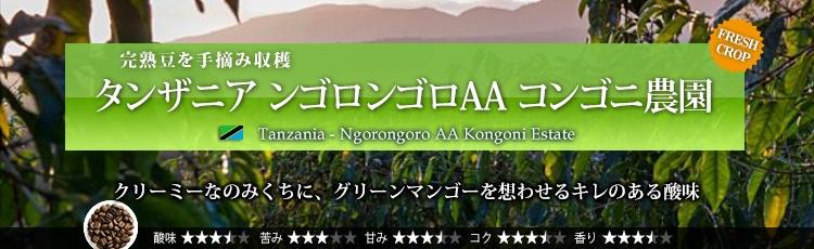 タンザニア ンゴロンゴロAA コンゴニ農園 - Tanzania Ngorongoro AA Kongoni Estate