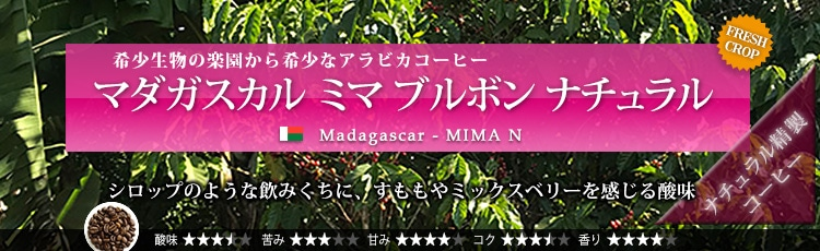 限定品 マダガスカル ミマ ブルボン ナチュラル