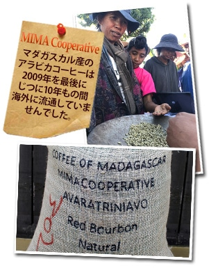 マダガスカル ミマ ブルボン ナチュラルについて