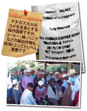 マダガスカル カムカフィ ウォッシュドについて